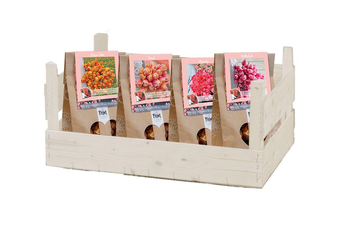 Display klein tulpenbollen